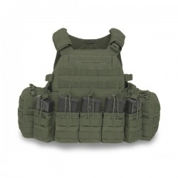 DCS G36 Plate Carrier - Olive Drab